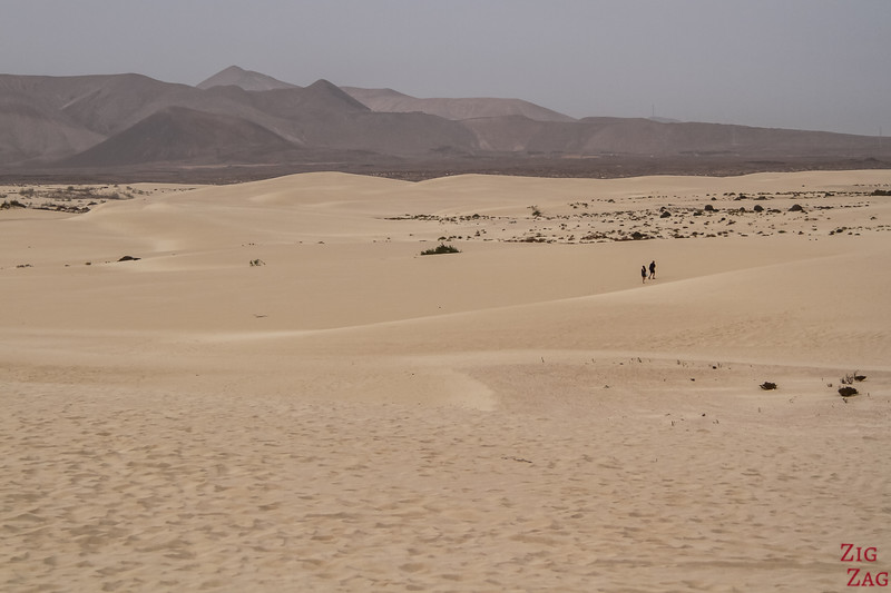 Lanzarote to Fuerteventura Day Trip - Is it worth it? sand dunes