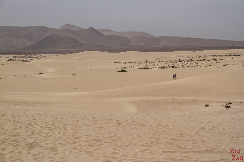 Get lost in the Sand dunes - Things to do in Corralejo