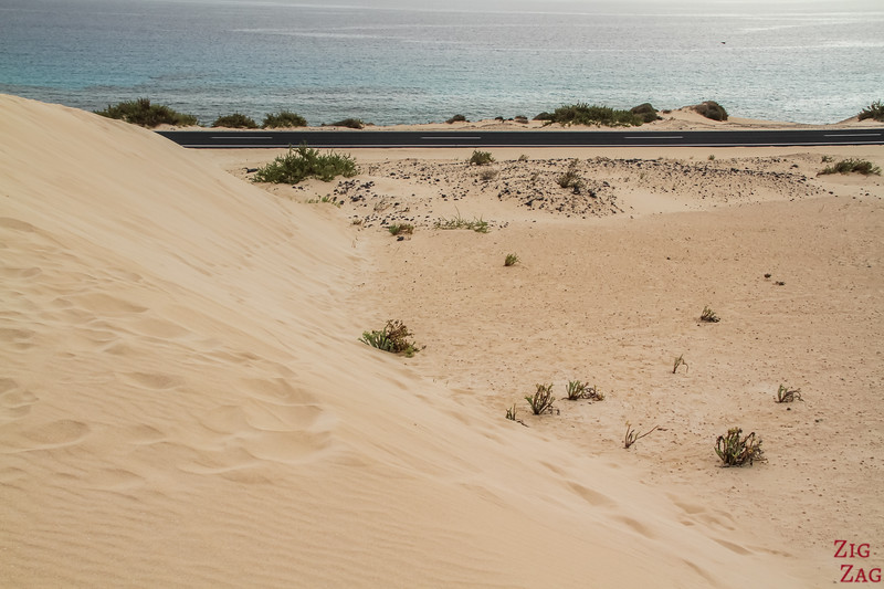 Visiter le parc naturel des Dunes de Corralejo photo 1