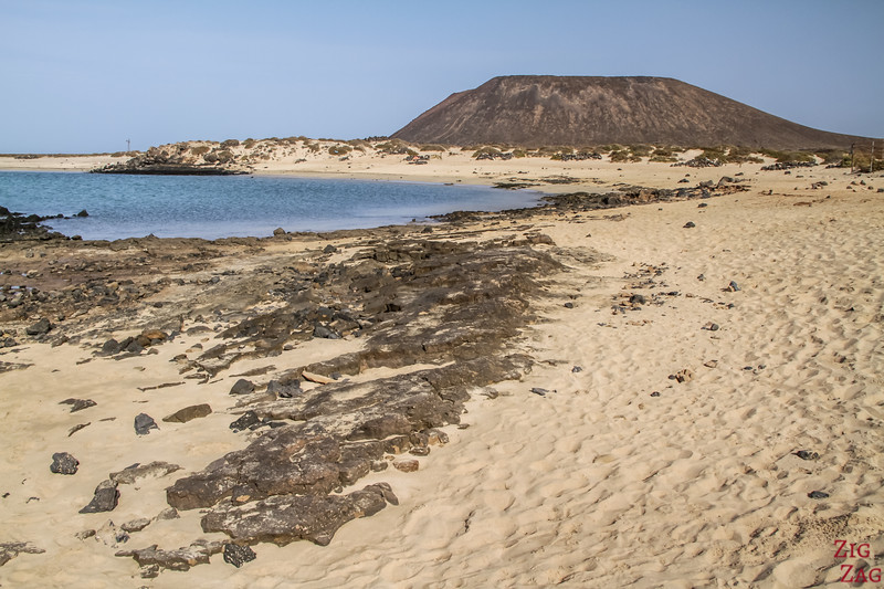 Top thing to do in Fuerteventura - lobos island 2
