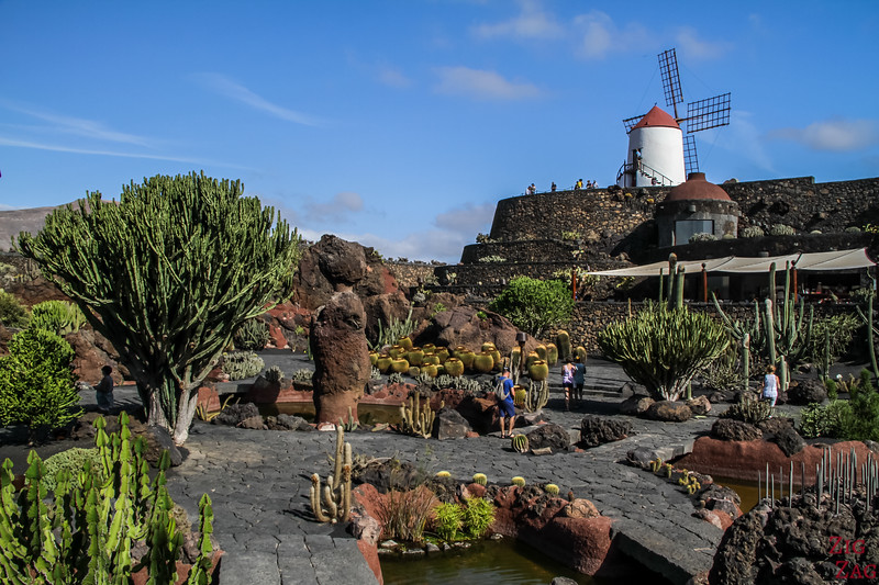 Jardin de Cactus Lanzarote - Photo 3