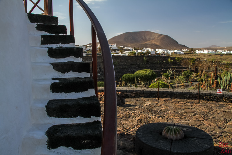 Jardin de Cactus Lanzarote - Photo 8