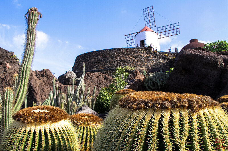 Jardin de Cactus Lanzarote - Photo 2
