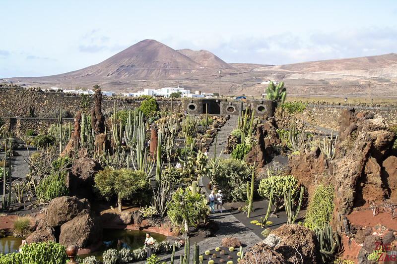 Jardin de Cactus Lanzarote Photo 1