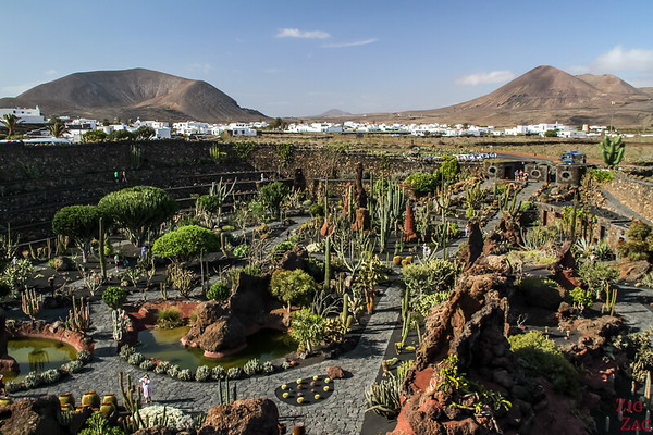 Best Lanzarote attractions - Cactus Garden 3