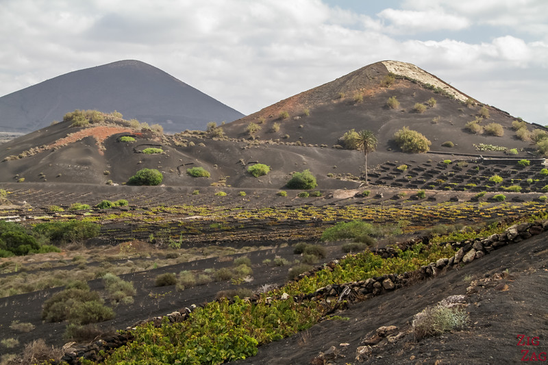 Lanzarote vineyards volcano photos 2