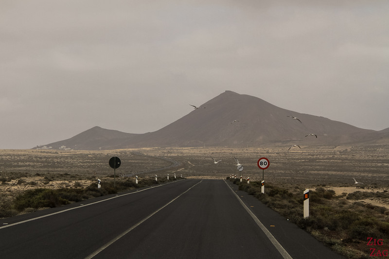 Driving Rules in Lanzarote 1