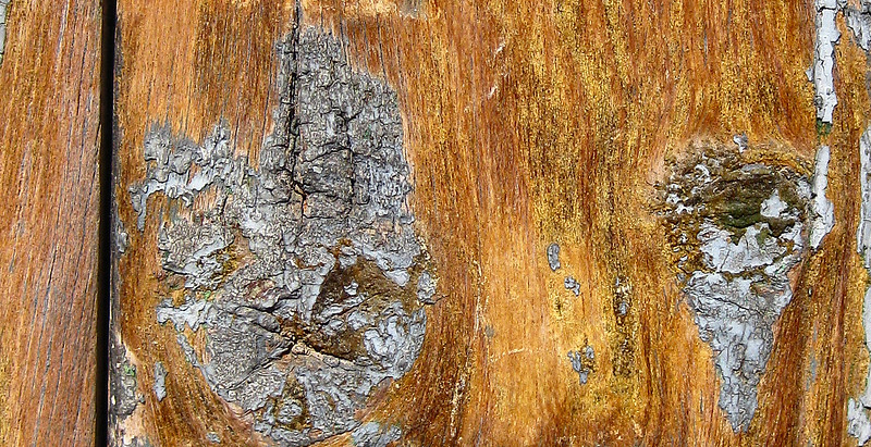Old varnish on a wooden door, Puerto del Rosario, Fuerteventura.