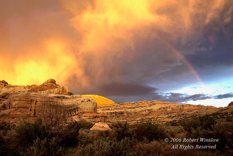 Rainbow, Sunset, Upper Salt Creek Canyon, The Needles District, Canyonlands National Park, Utah, USA, North America