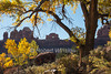 Autumn, Wooden Shoe Arch, Needles District, Canyonlands National Park, Utah, USA, North America