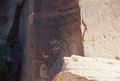 11/13/99 Navajo (horses & conquistadores to the left), Hopi (Diamondback rattler on the right) & Anasazi (not visible) rock art at Canyon de Chelly. Canyon de Chelly National Monument, Chinle, Apache County, AZ