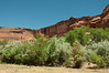canyondechelly2011 (356)