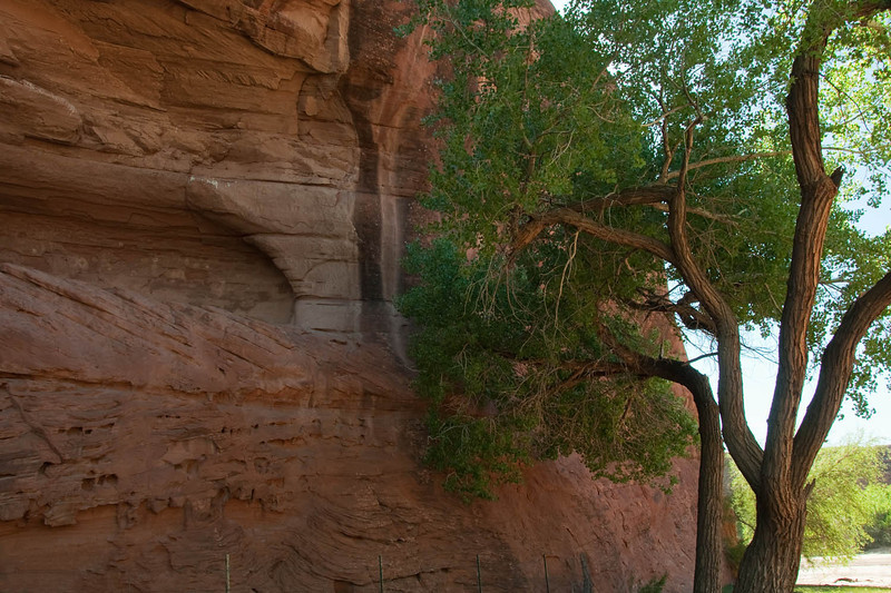 canyondechelly2011 (107)