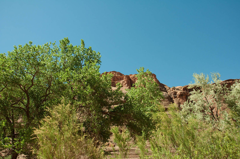 canyondechelly2011 (278)