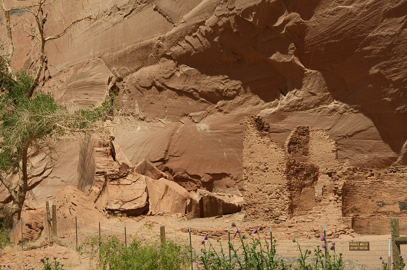 canyondechelly2011 (302)