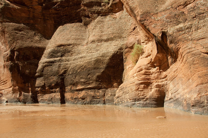 canyondechelly2011 (268)