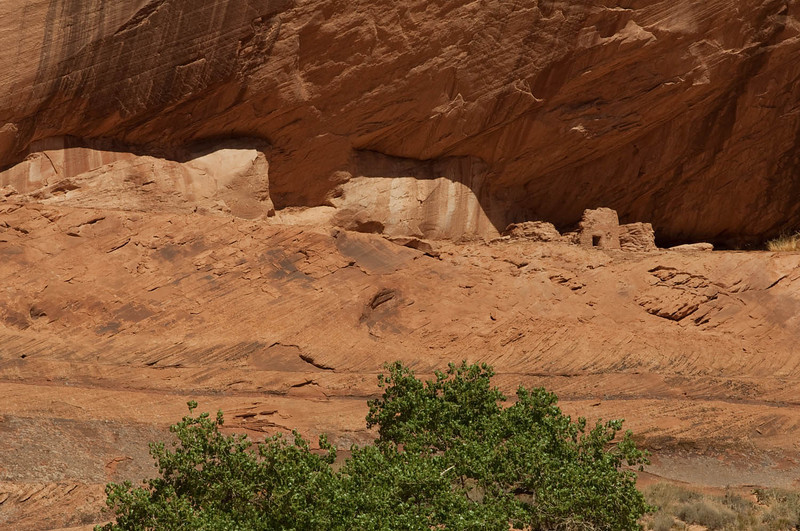 canyondechelly2011 (229)