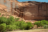 canyondechelly2011 (241)