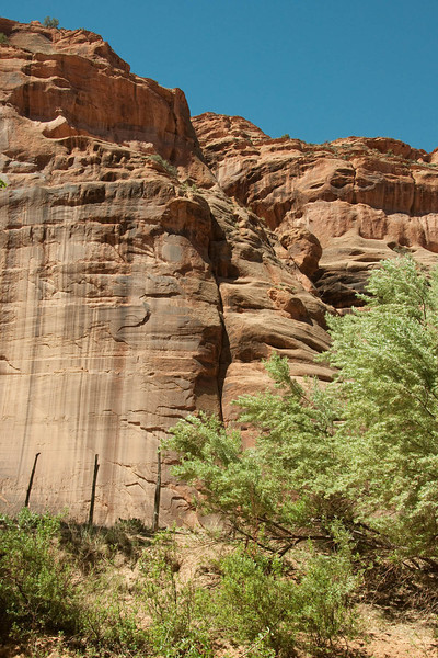 canyondechelly2011 (281)