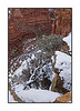 A snowy day in March in Canyon de Chelly in Arizona; best viewed in the largest sizes