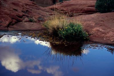 Rain pool on the rim of Canyon de Chelly, Arizona, October, 2003.