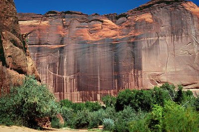 View of cliffs from the canyon floor. White House Ruin trail. Canyon de Chelly, Arizona. October, 2003.