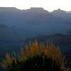 Arizona Vac Fri 005