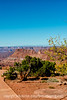 Needles Overlook, Canyonlands National Park, Utah; best viewed in the largest sizes