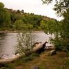 Animas River in Durango, Colorado...