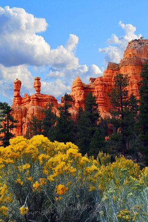 September in Red Canyon