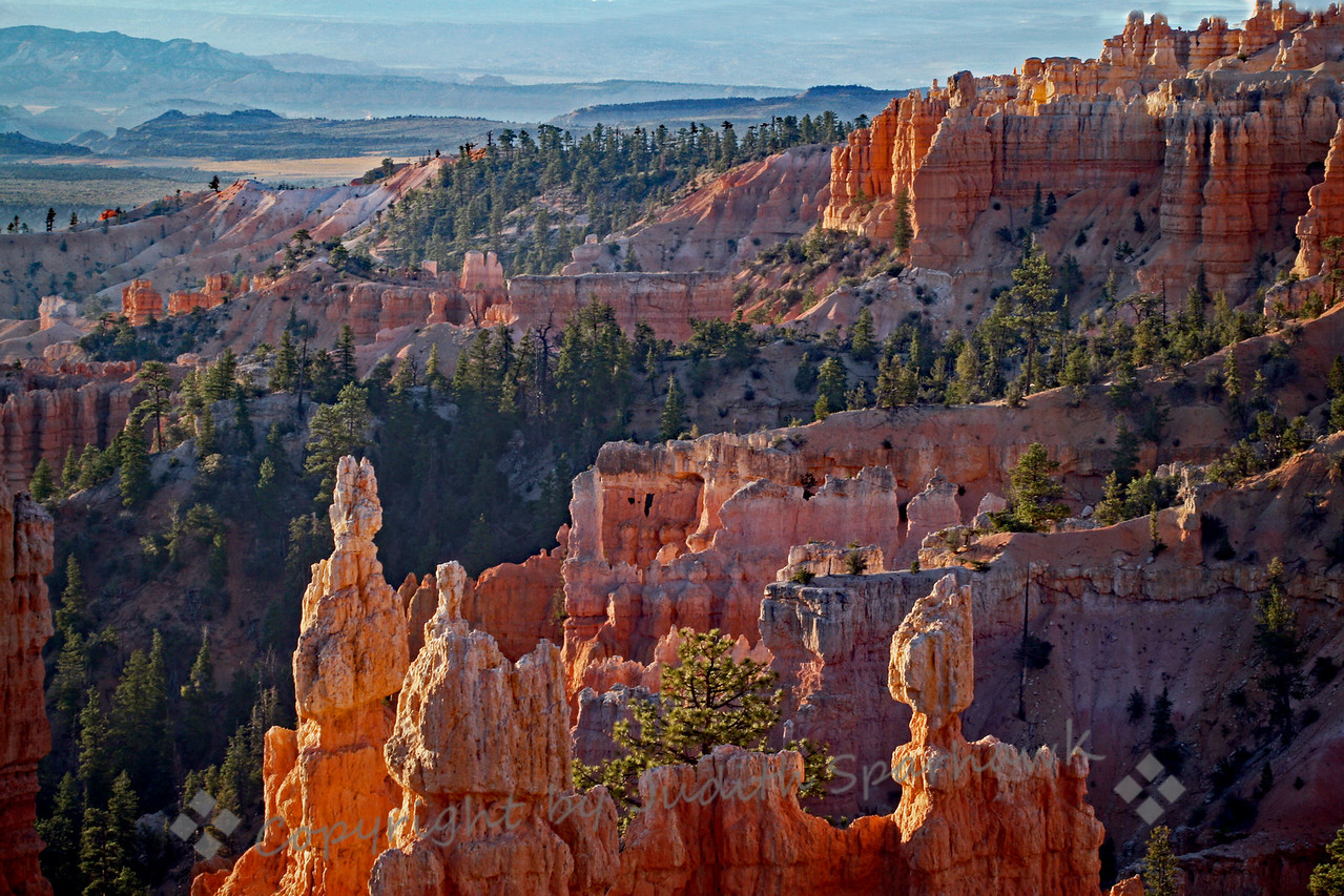Early Light in Fairyland Canyon