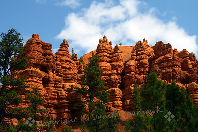Red Canyon Pillars