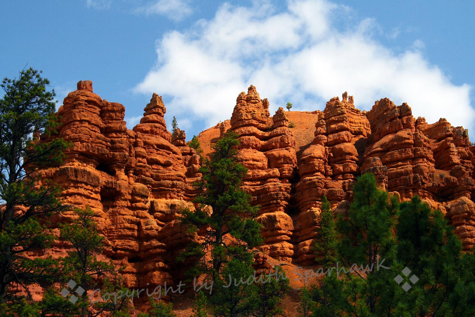 Red Canyon Pillars