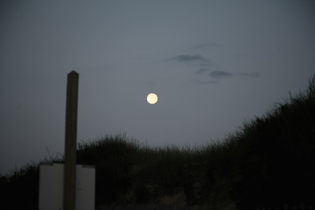 Moon Over Longnook