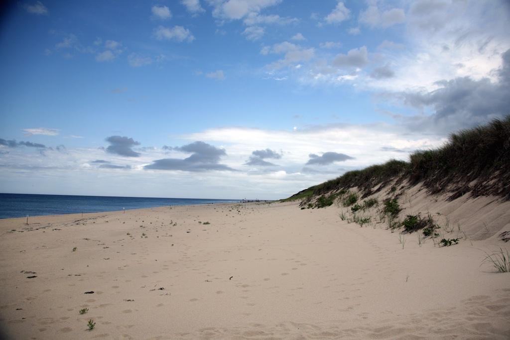 Head of the Meadow Beach 2