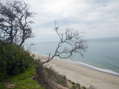 Dunes Erroding at the Wave Observation Shack