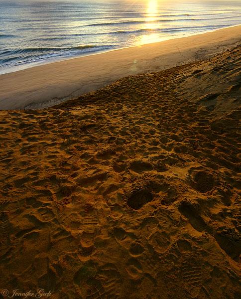 Beach at sunrise.<br> Cape Cod, Massachusetts