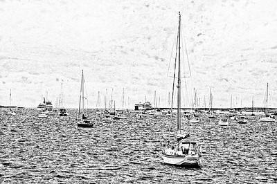Hyannis Harbour