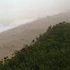 Fog and Rain at Nauset Beach