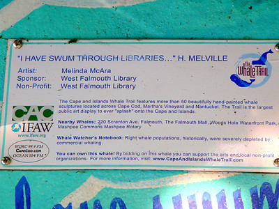 """""""I Have Swum Throught Libraries..."""" H. Melville, West Falmouth"""