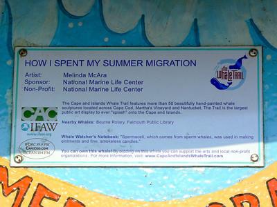 How I Spent My Summer Migration, Buzzards Bay