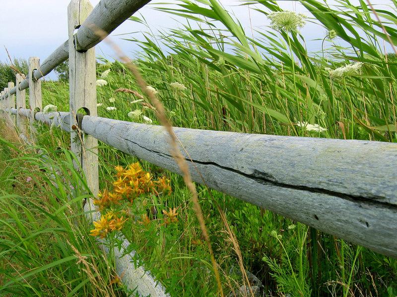 A fence on Nantucket, MA.