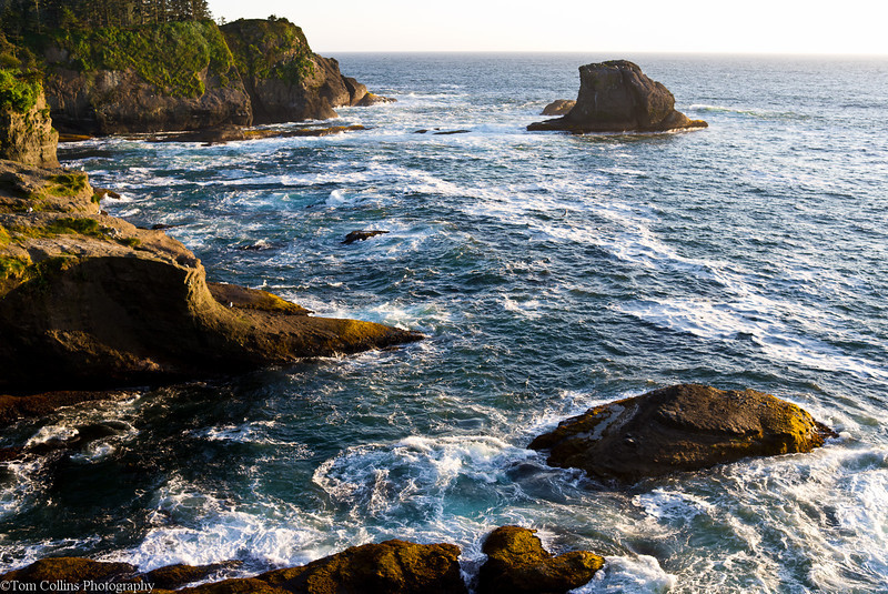 Looking out from a lookout at Cape Flattery<br /> 03