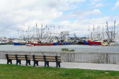 Cape May NJ, May 2007