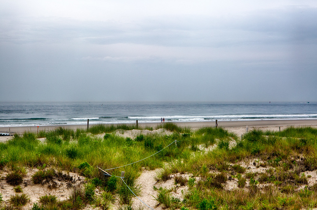 Dunes, Cape May