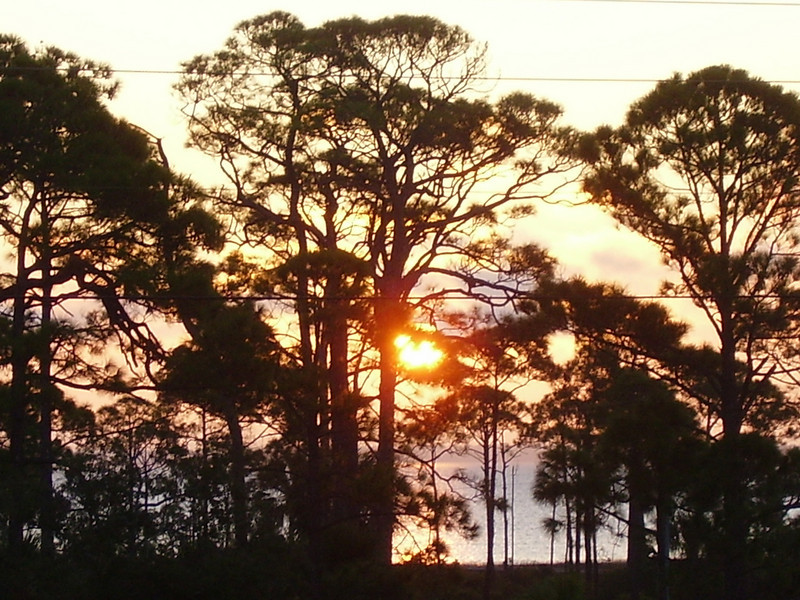 Sunrise October 10th #4