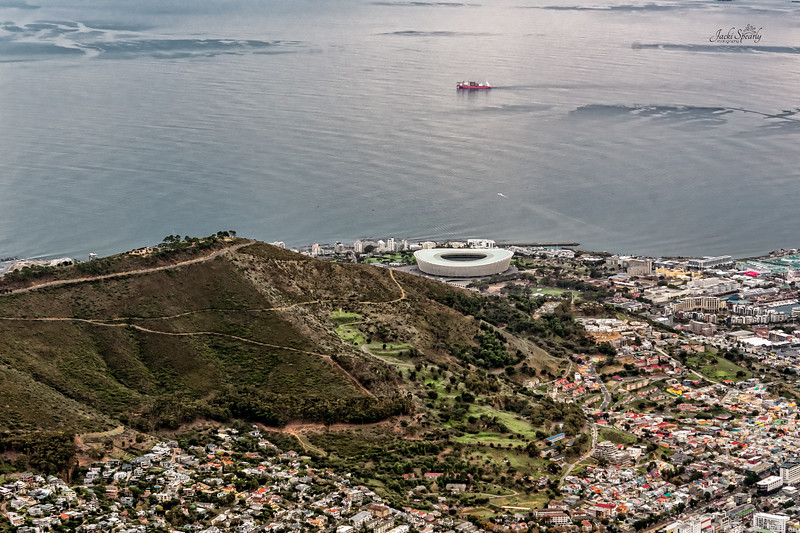 20190514-45 Cape Town Table Mtn, Lion's Rump and Stadium