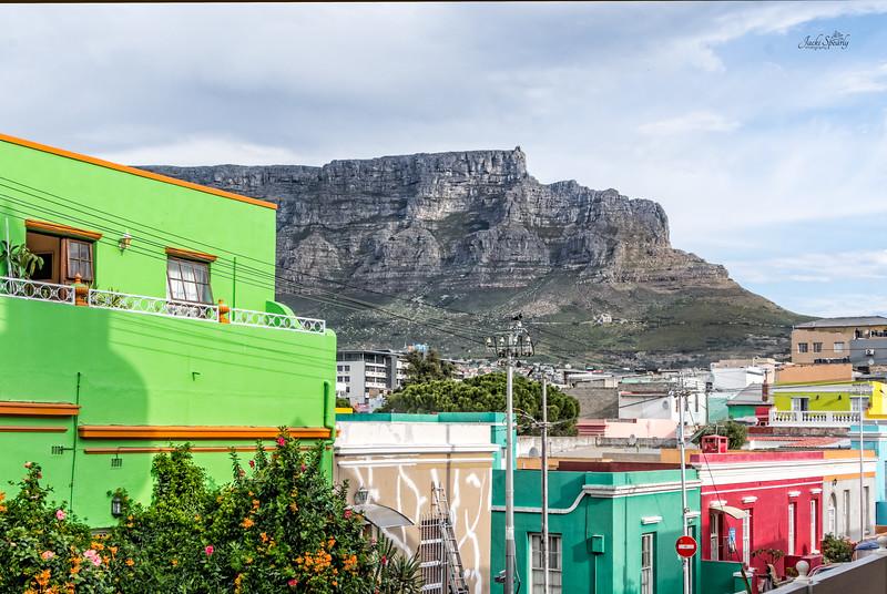 20190514-931 Cape Town Table Mtn, Gardens and Bo Koop homes-Edit topaz