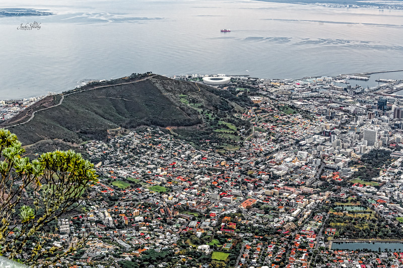 20190514-40 Cape Town Table Mtn, V & A Waterfront, The Arena, Signal Hill, Lions Rump, Bo-KaapDa Waal Park