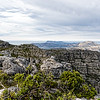 20190514-86 Cape Town Table Mtn, Southern view of Table Mtn cliffs